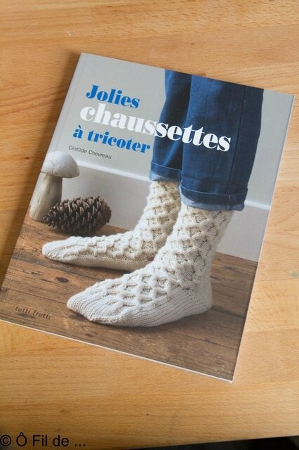 Jolies chaussettes à tricoter