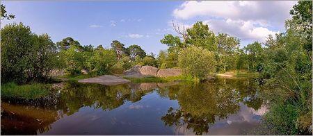 Fontainebleau_4