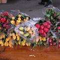 goûter du printemps et les tulipes