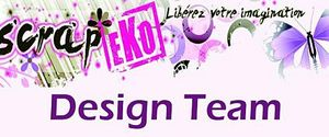 Banniere-Design-Team-copie
