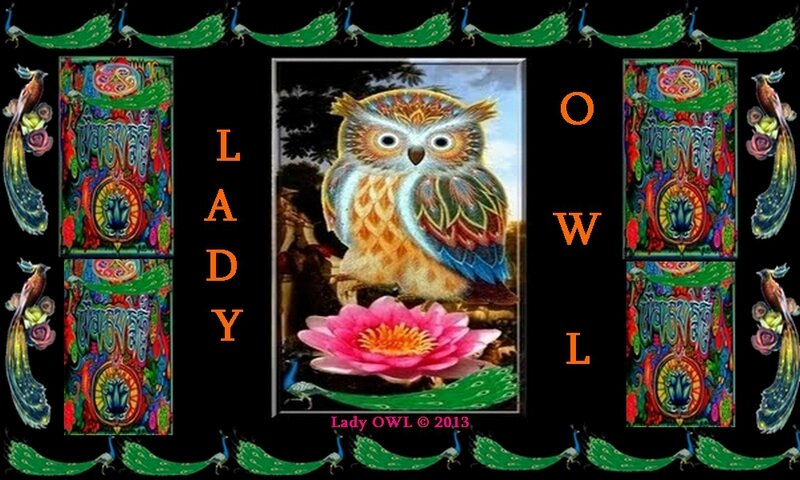 Lady OWL and Mister OWL