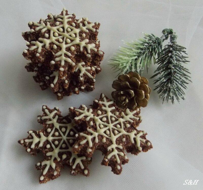 flocons au cacao, noix de coco et chocolat blanc