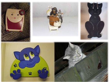 COLLEC CATS (41)
