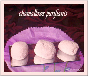 chamallowspurifiants