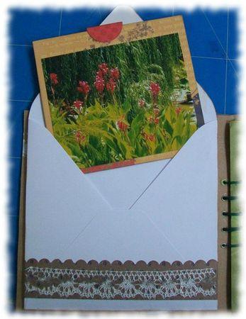 fleurs du moulin (12)