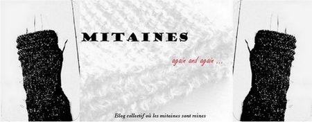 petite_banni_re_mitaine