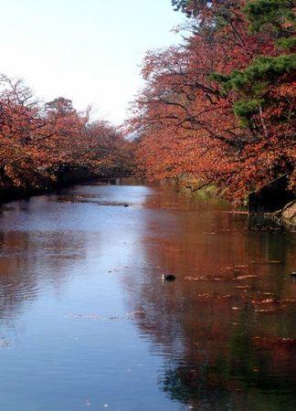 japan's fall 1