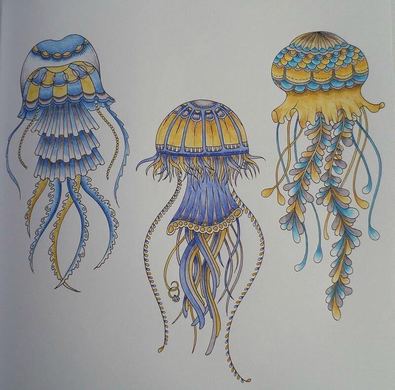 Un groupe de méduses
