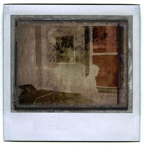 polaroid19WEB