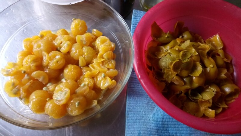 citrons (1)