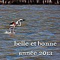 Belle, douce, heureuse année 2013 !