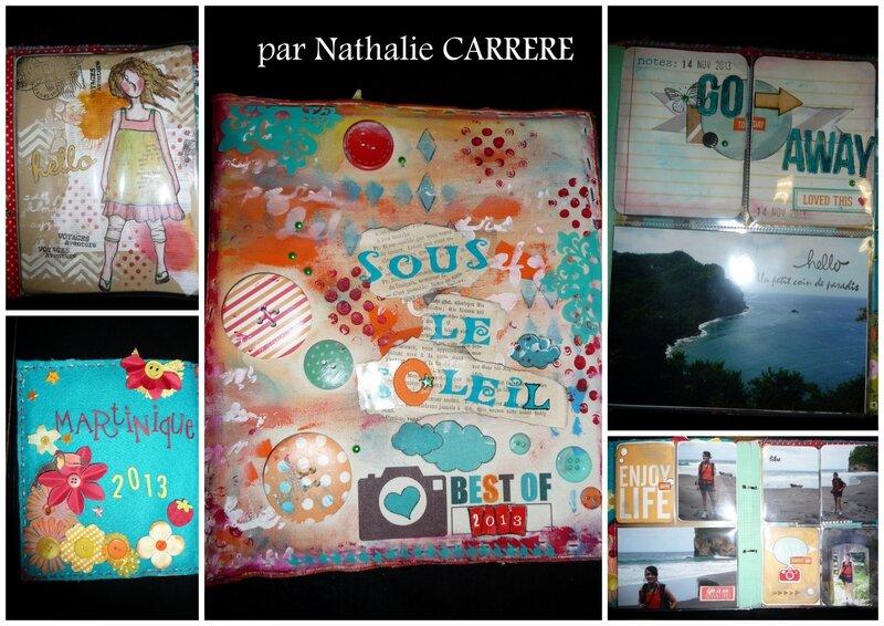 01 SB Février 2014 Nathalie CARRERE