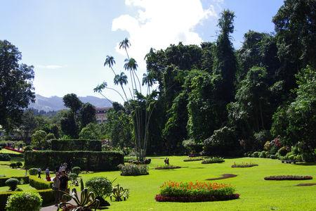 jardinbotaniquekandy