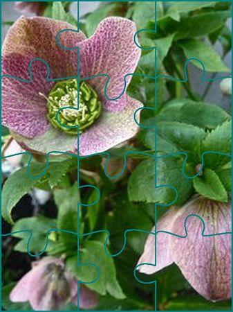 test effet puzzle photo 18 PIECES ESPACE 3 EN VERT