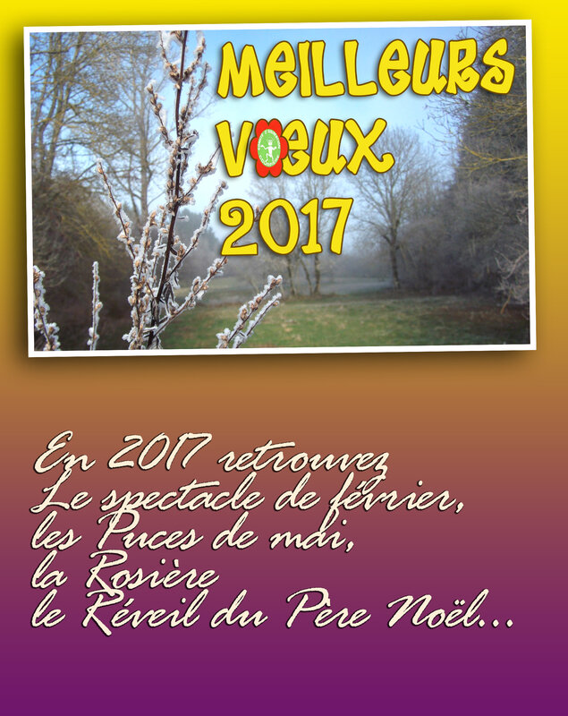 blogvoeux2017