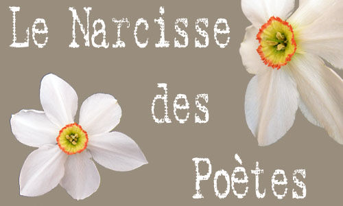 483_manosque_narcisse_poetes