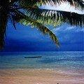 La plage de mes rêves !!!
