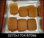 SPECULOOS3