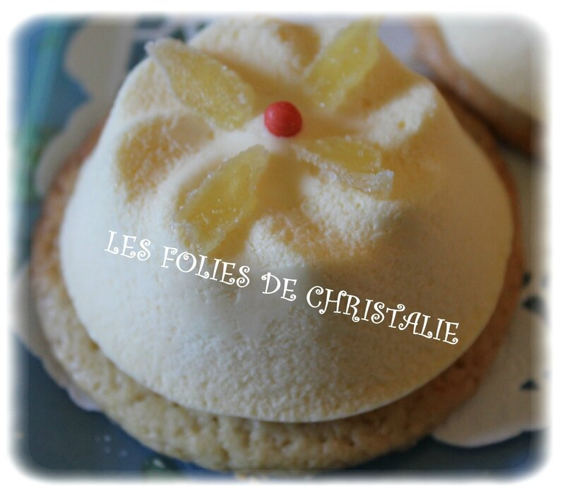 Mousse agrumes 20