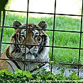 05/08/16 : le zoo d'arcachon # 2