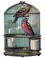 bird_cage_vintage_image_GraphicsFairy004sm
