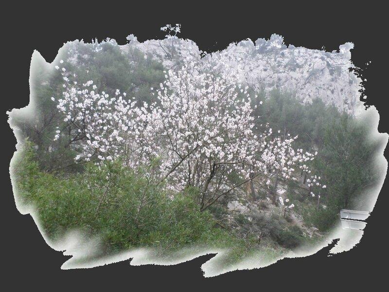 gorges d'ollioules (3b)