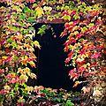 Lorien, fenêtre d'automne (58)