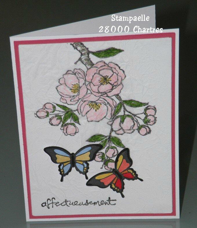 carte cerisier (2)