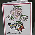 Cerisier et papillons