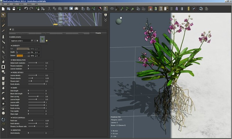 09 Dendrodium orchid 3D plant model flower epiphyte 3DS C4D Max FBX obj screen