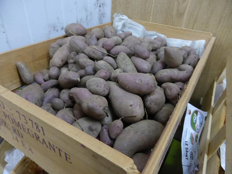 23-pommes de terre (9)