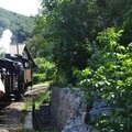 train a vapeur des cevennes (55)