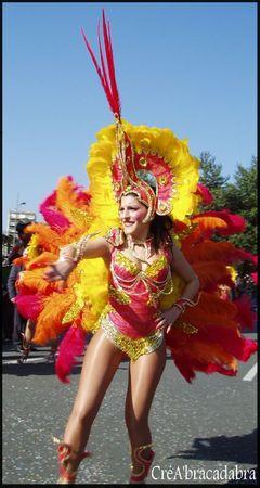 Carnaval Limoges 2011 (3)