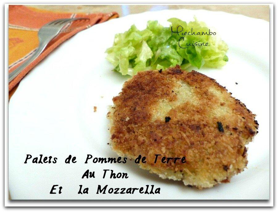 Palets de Pommes de Terre au Thon et à la Mozzarella