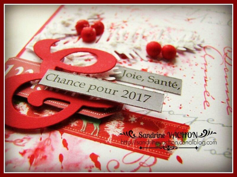 Sandrine VACHON Défi 457 (3)