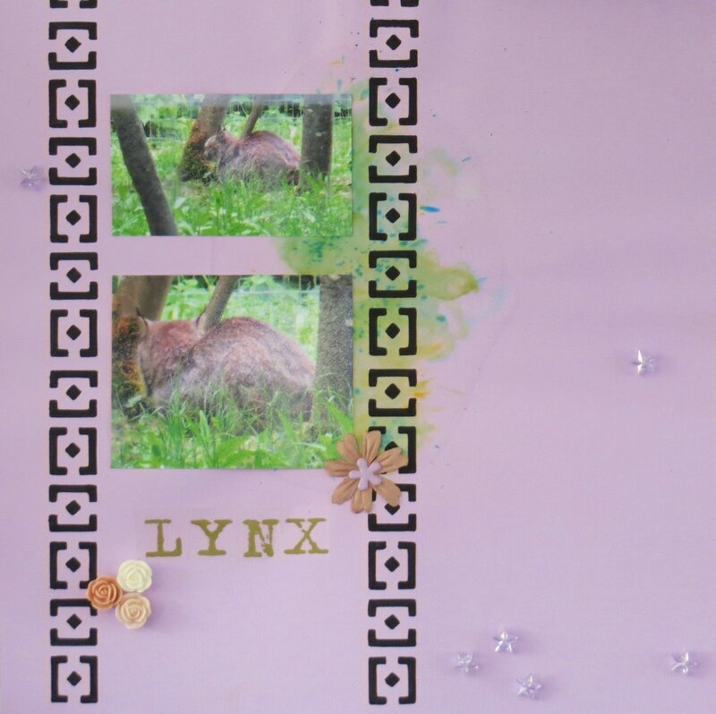 2013-lynx