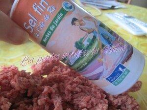 Riz aux boulettes de viandes02