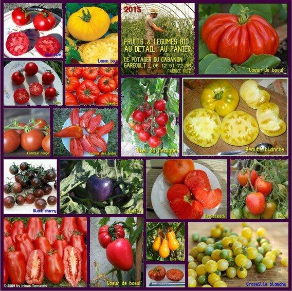 Tomates 2015 - Fruits légumes paniers bio var paca