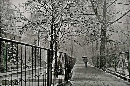 Walking_in_the_snow_daaram