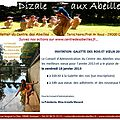 dizale janvier 2013
