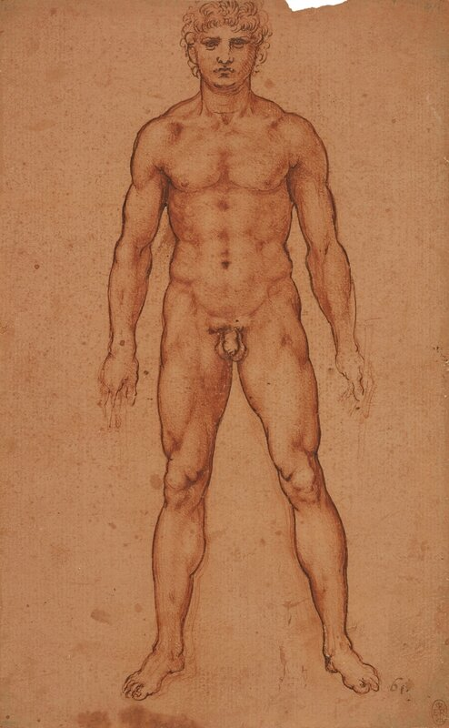 021_A nude man from the front RCIN912594