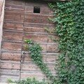 une porte romantique