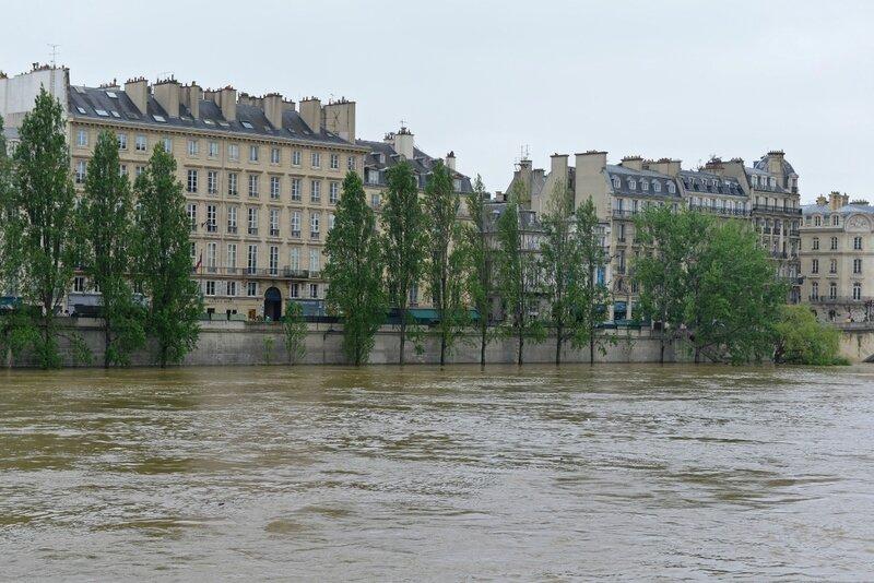 Seine-juin-16 (2) (1200x801)