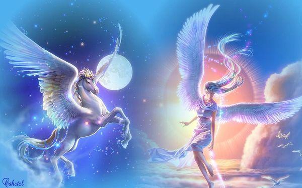 ange et pégase
