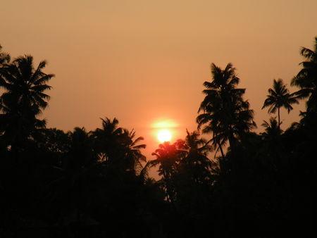 Mysore___Calicut___arriv_e_Cochin_802
