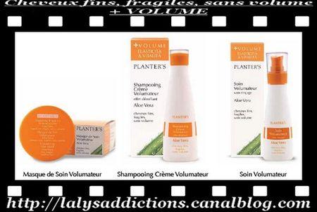 Planter_s_pour_cheveux_fins__fragiles_sans_volume