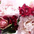 fleursP1010898