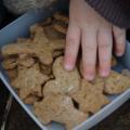 Biscuits vanillés pour petits et grands gourmands, sans blé, sans lait, avec ou sans oeuf