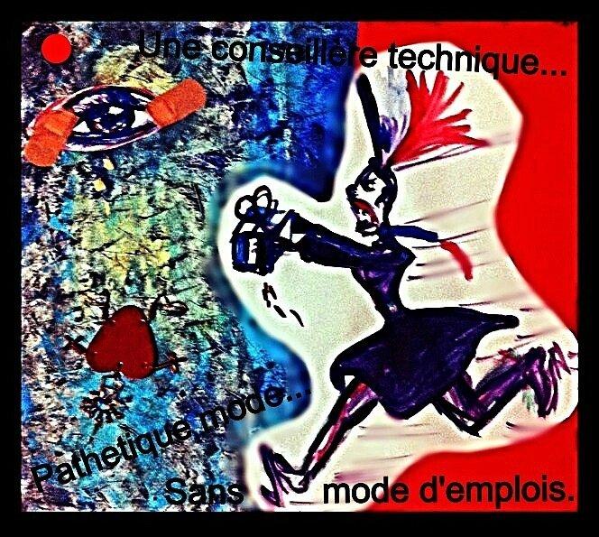 BRÈVE PARANOÏAQUE : UNE CONSEILLÈRE TECHNIQUE...PATHÉTIQUE MODE...SANS MODE D'EMPLOI