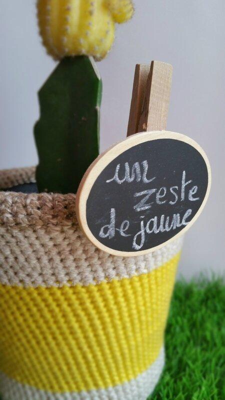 crochet-citron-cache-pot-plante-jaune-cactus-5